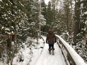 MacGregor-Point-Provincial-Park-Winter